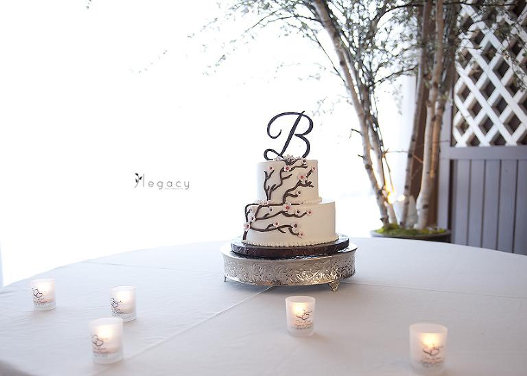 Brianna And David Keystone Wedding PhotographyElin