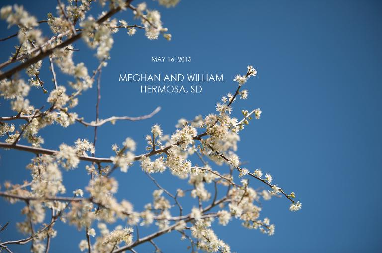 001Meg and Will Hermosa South Dakota Wedding