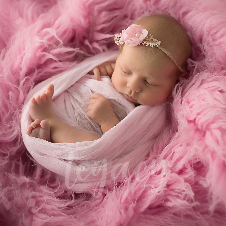 Cotton candy newborn legacy photo and design rapid city south dakota